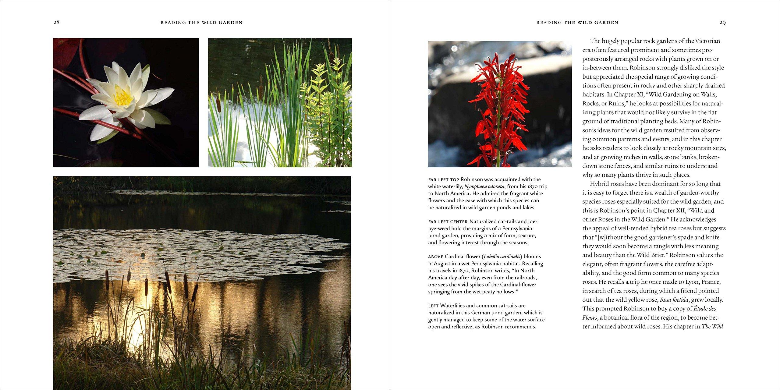 The Wild Garden Expanded Edition William Robinson Rick Darke