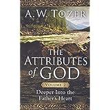 Attributes Of God Volume 2