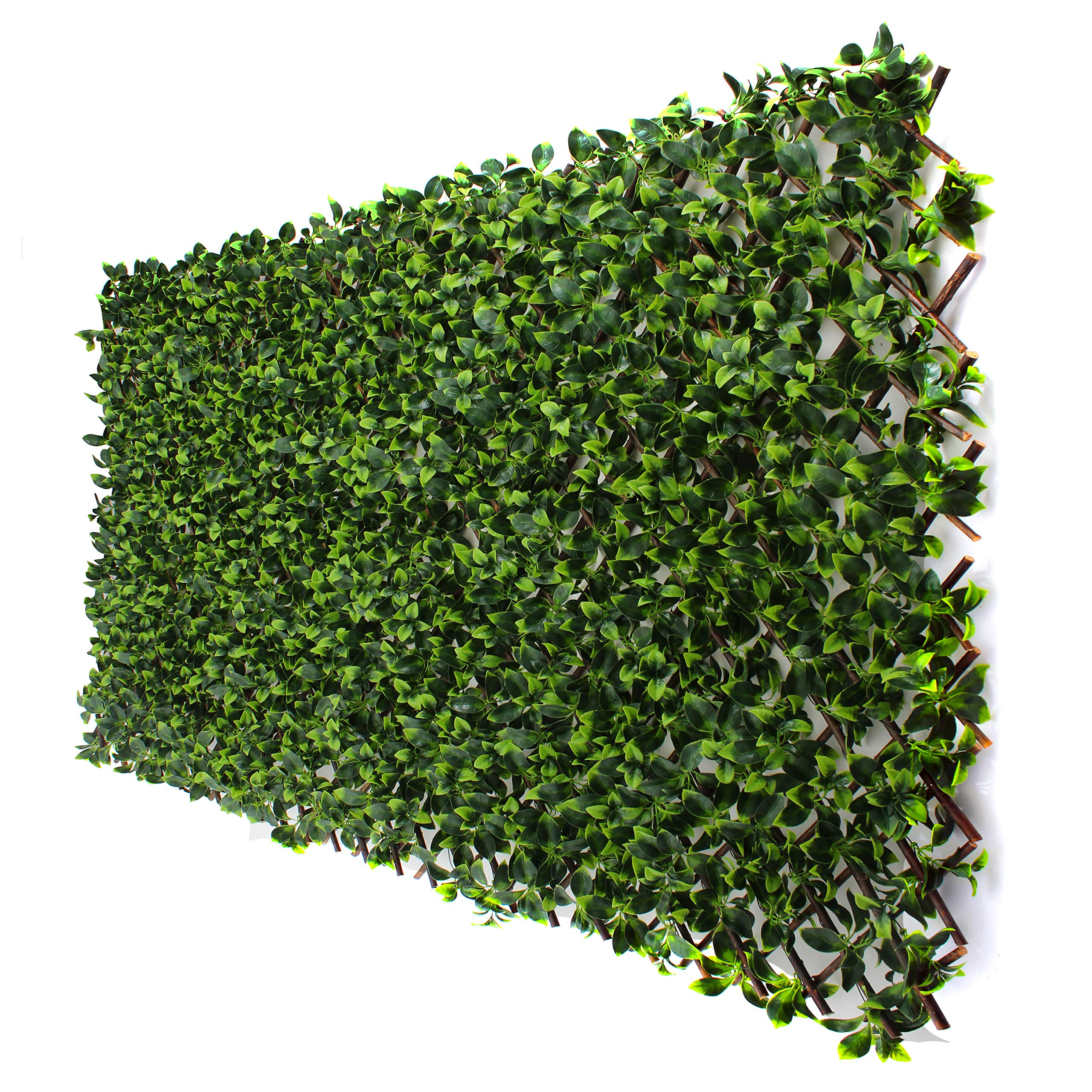 3rd Street Inn Gardenia Leaf Trellis 1-Pack - Bamboo Greenery Panel - Boxwood and Ivy Privacy Fence Substitute - DIY Flexible Fencing (Gardenia) by 3rd Street Inn