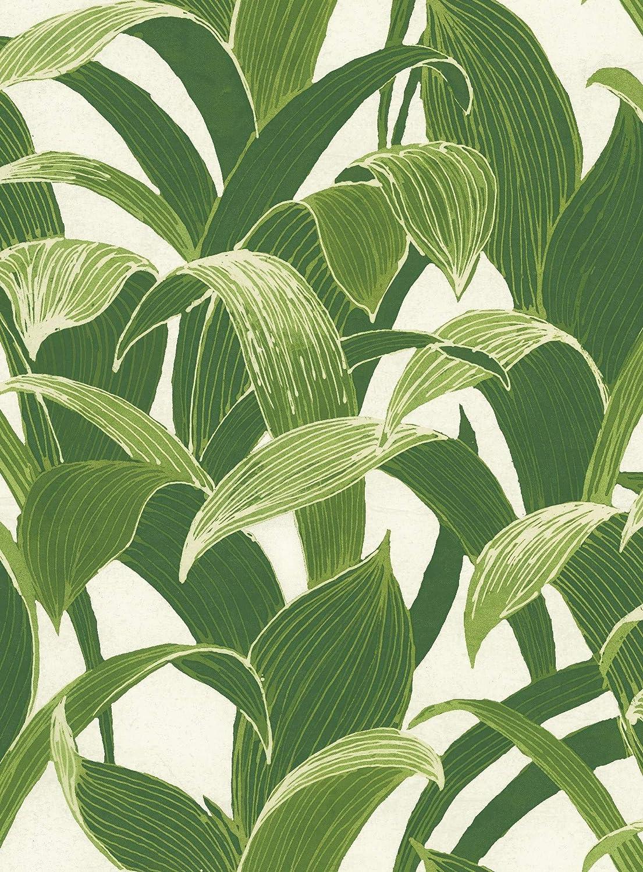 Tropical Banana Leaves Peel & Stick Wallpaper GW1004, Green