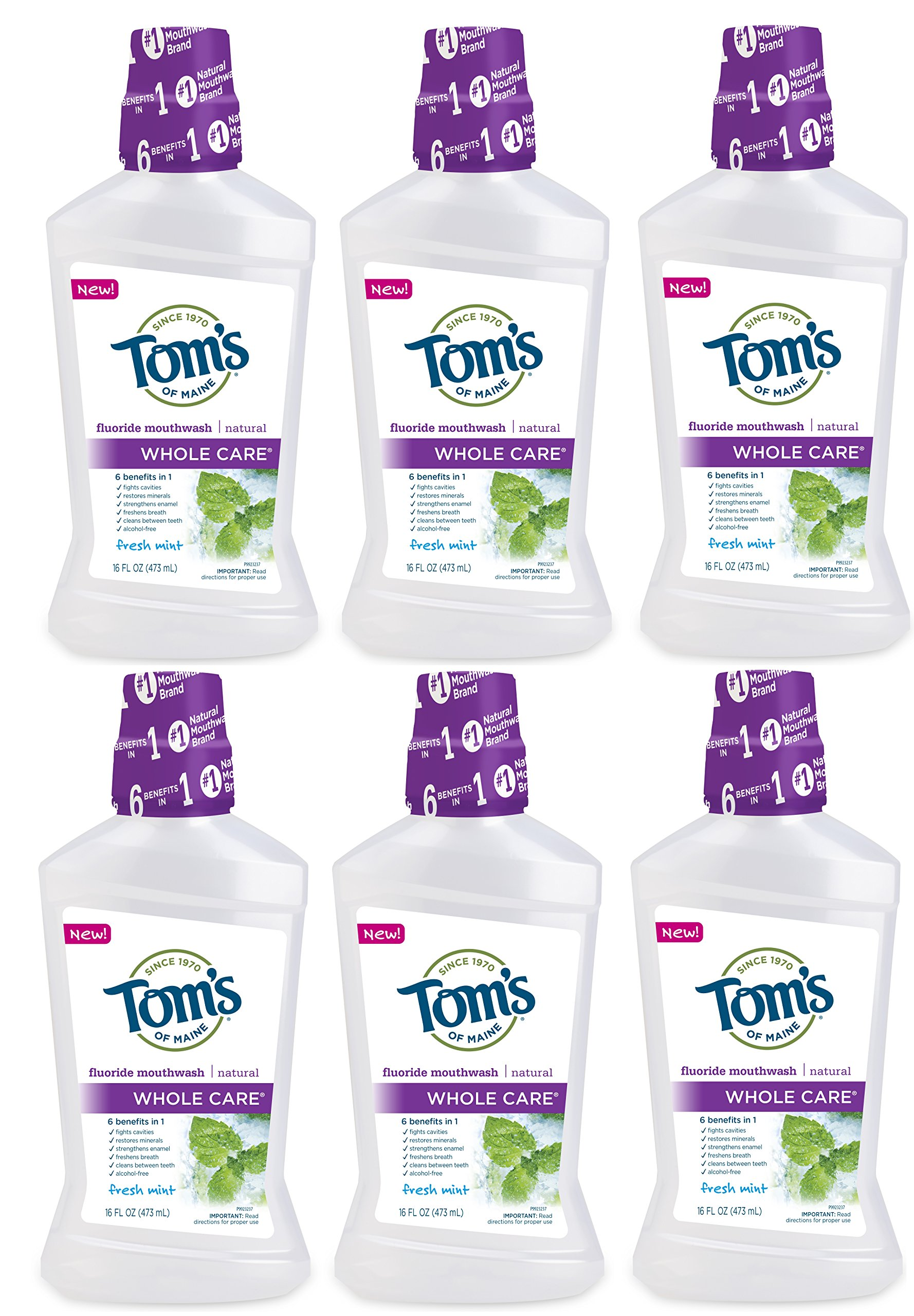 Tom's of Maine Whole Care Natural Mouthwash, Mild Mint, 16 Ounce, 6 Count