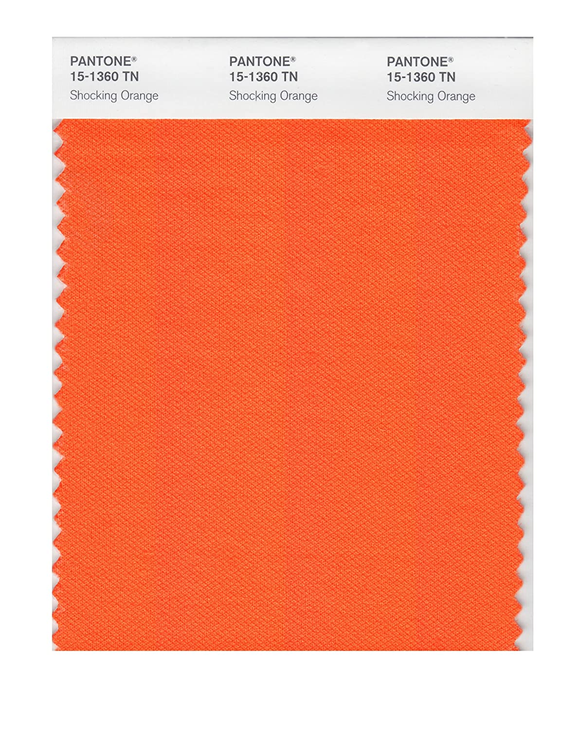 Pantone 15 1360 Nylon Brights Color Swatch Card