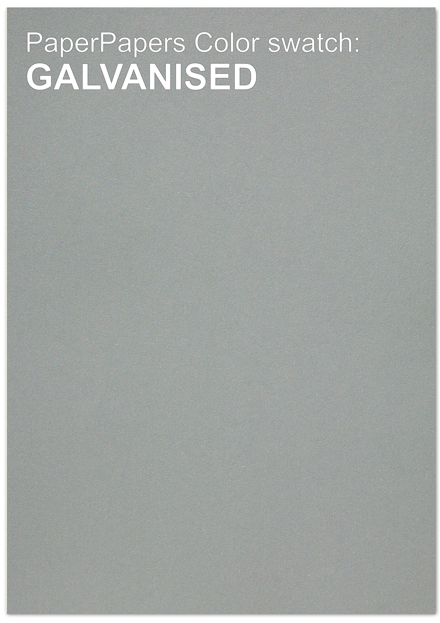 Curious Metallic - GALVANISED SILVER 12X18 Multipurpose Paper - 32lb Text - 200 PK by Paper Papers