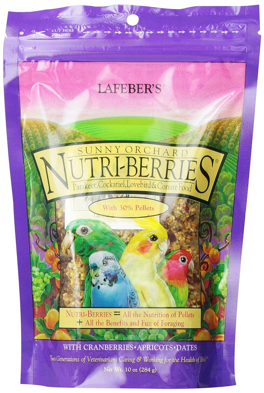Lafeber Gourmet Sunny Orchard Nutri-berries pour sac de cacatoès 283, 5gram Lafeber Company 41054828400