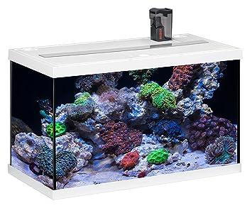 Eheim Aquastar 63 Marin - Acuario para acuariofilia, color blanco, 2 x 12 W, 63 L: Amazon.es: Productos para mascotas