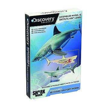 Paladone Discovery Channel - Puzle con anatomía de tiburón 3D ...