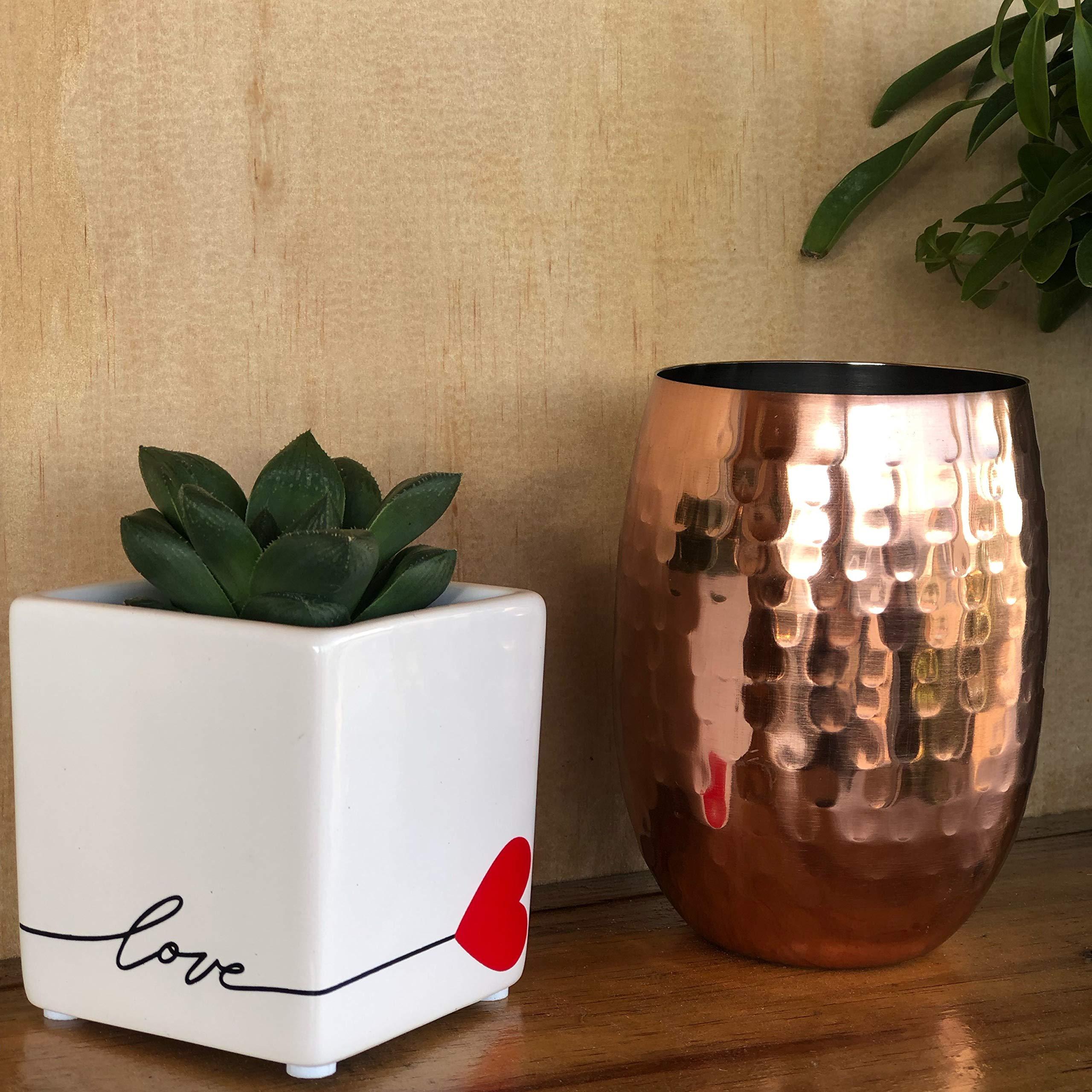 Costa Farms Live Mini Aloe Plant, Grower's Choice, in Love Balloon Ceramic by Costa Farms (Image #4)