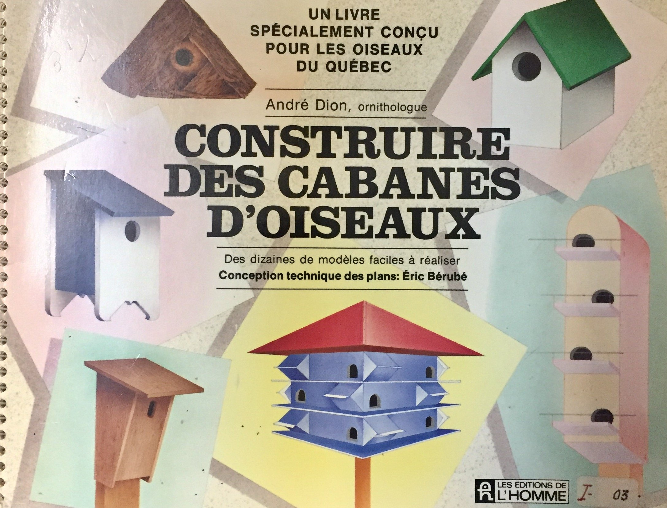 Construire Des Cabanes D Oisea French Edition Dion Andre 9782761905749 Amazon Com Books