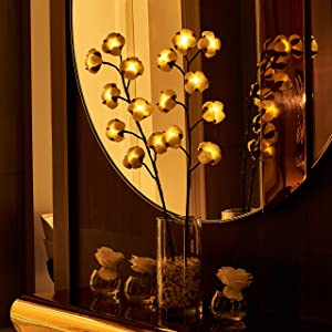 Hairui Lighted Artificial Cotton Ball Stems 30 Inches 16 LED Battery Operated with Timer for Farmhouse Christmas Home Decorations String Lights Wire Invisible (Vase Excluded)