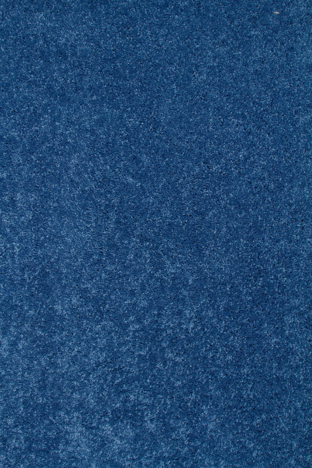 Ambiant Kids Solid Color Royal 3'X5' - Area Rug