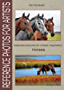 Horses. Selected pictures for artistic inspiration: Reference Photos for Artists