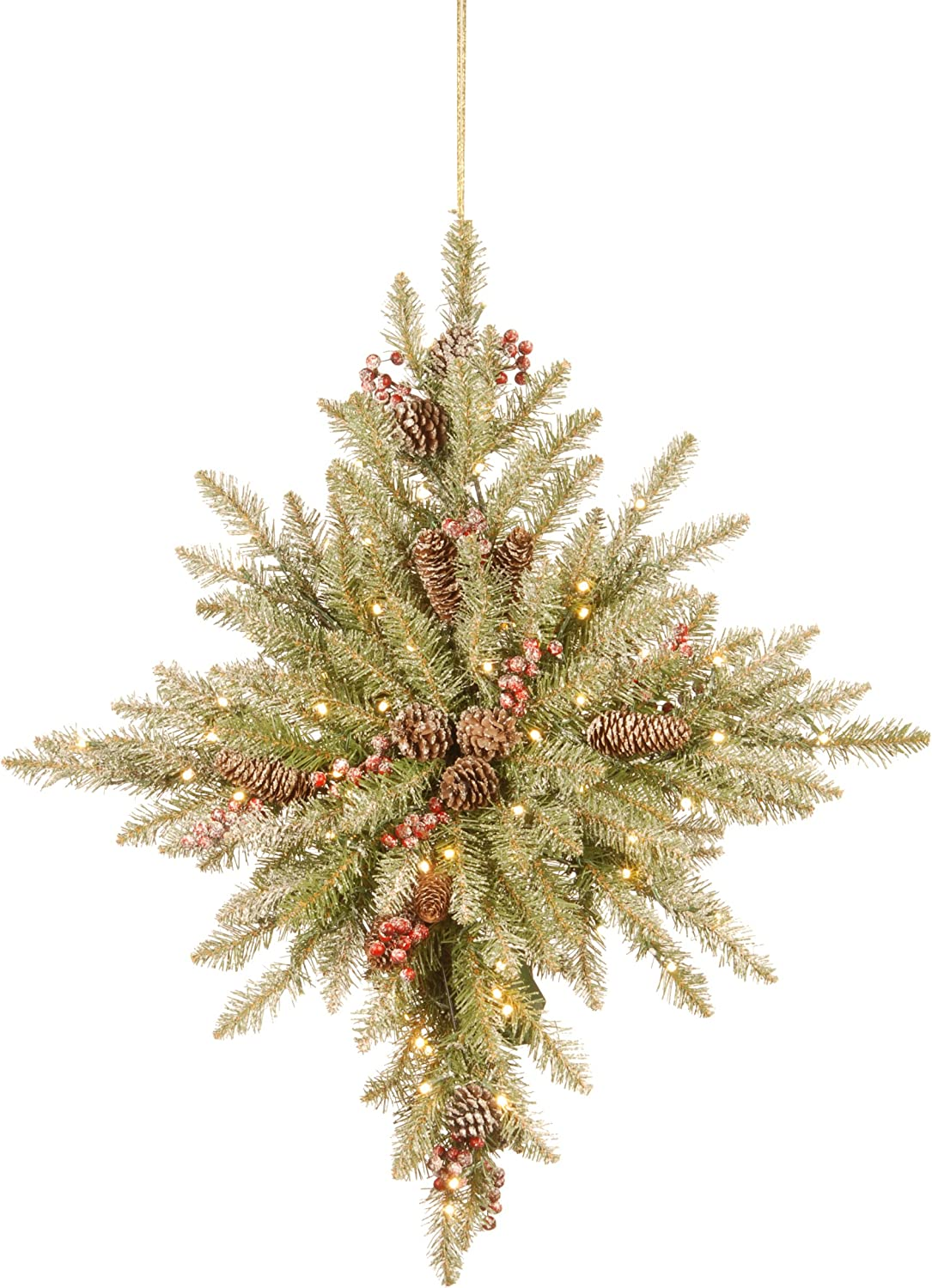 National Tree Dunhill Fir Bethlehem Star with Battery Operated LED Lights
