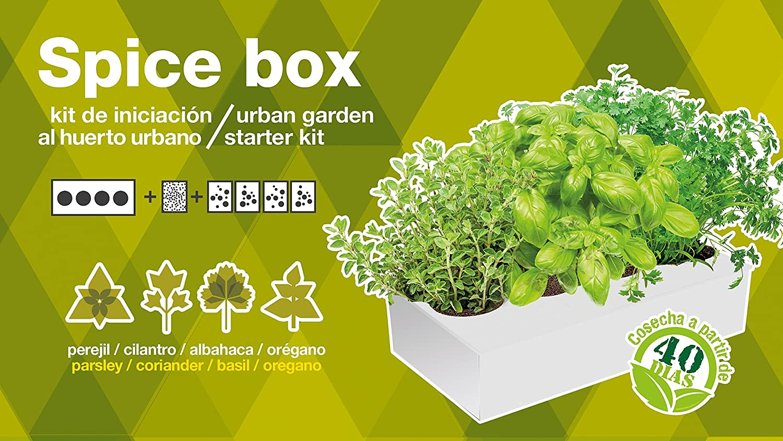 SeedBox PGSPK Kit huerto Urbano de orégano y albahaca, Blanco y ...