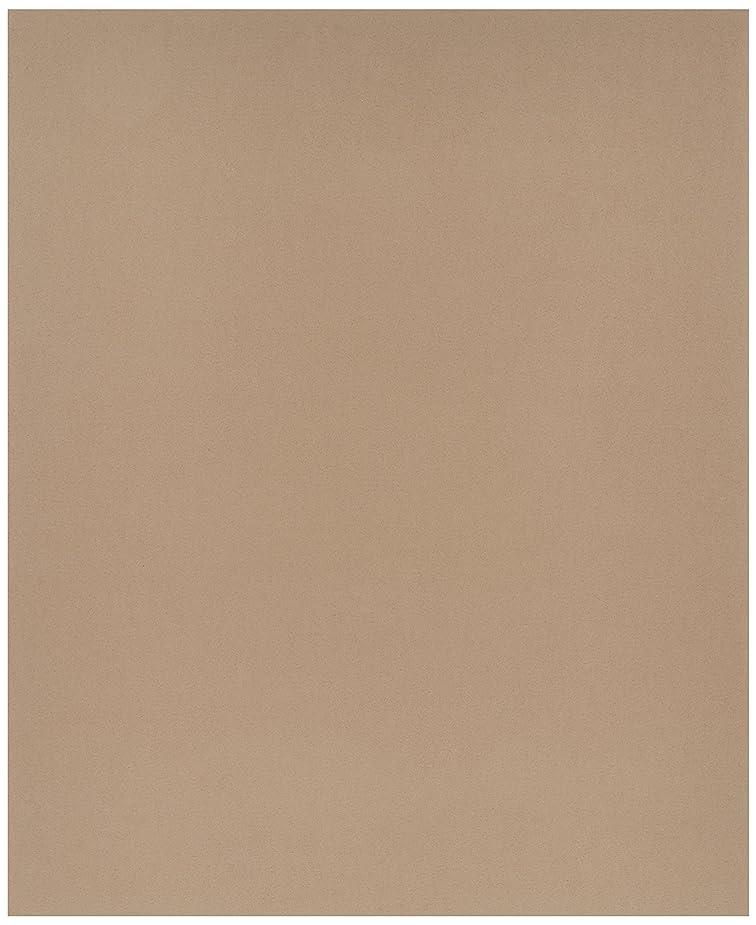 カメ赤褐色HAKUBA 写真台紙 ランス L サイズ 2面 ヨコ×2枚 レッド L MRC-LYR