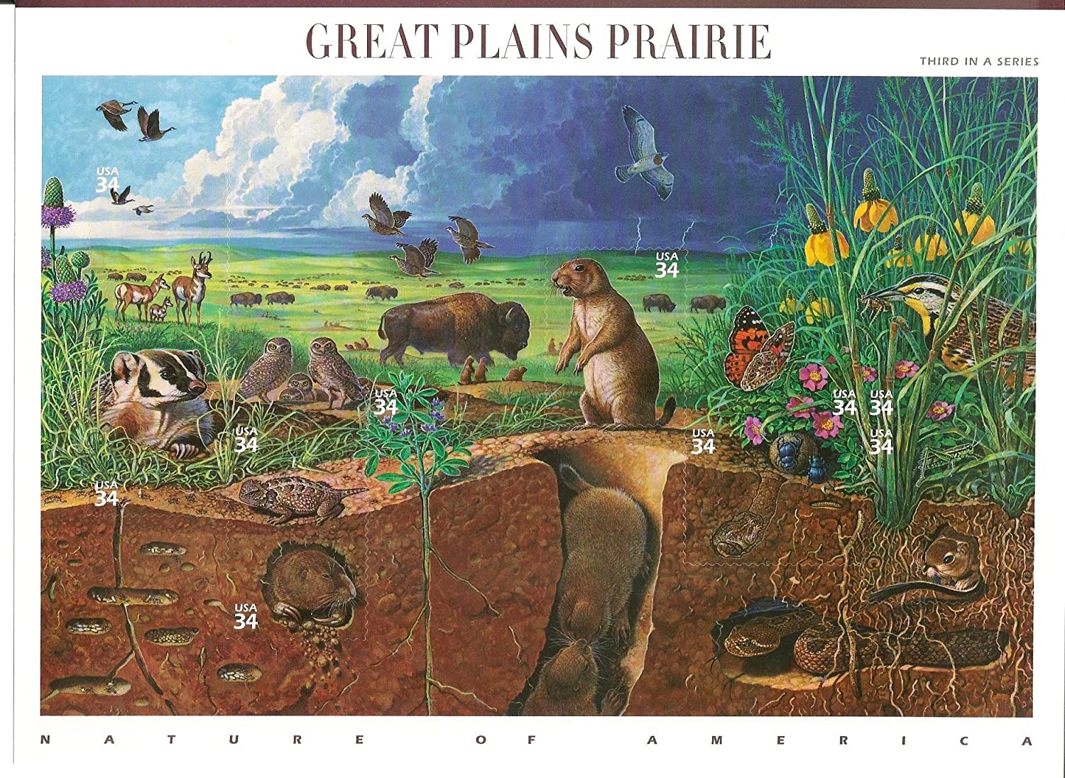 Great Plains Prairie (Nature of America), Full Sheet of 10 x 34-Cent Postage Stamps, USA 2001, Scott 3506
