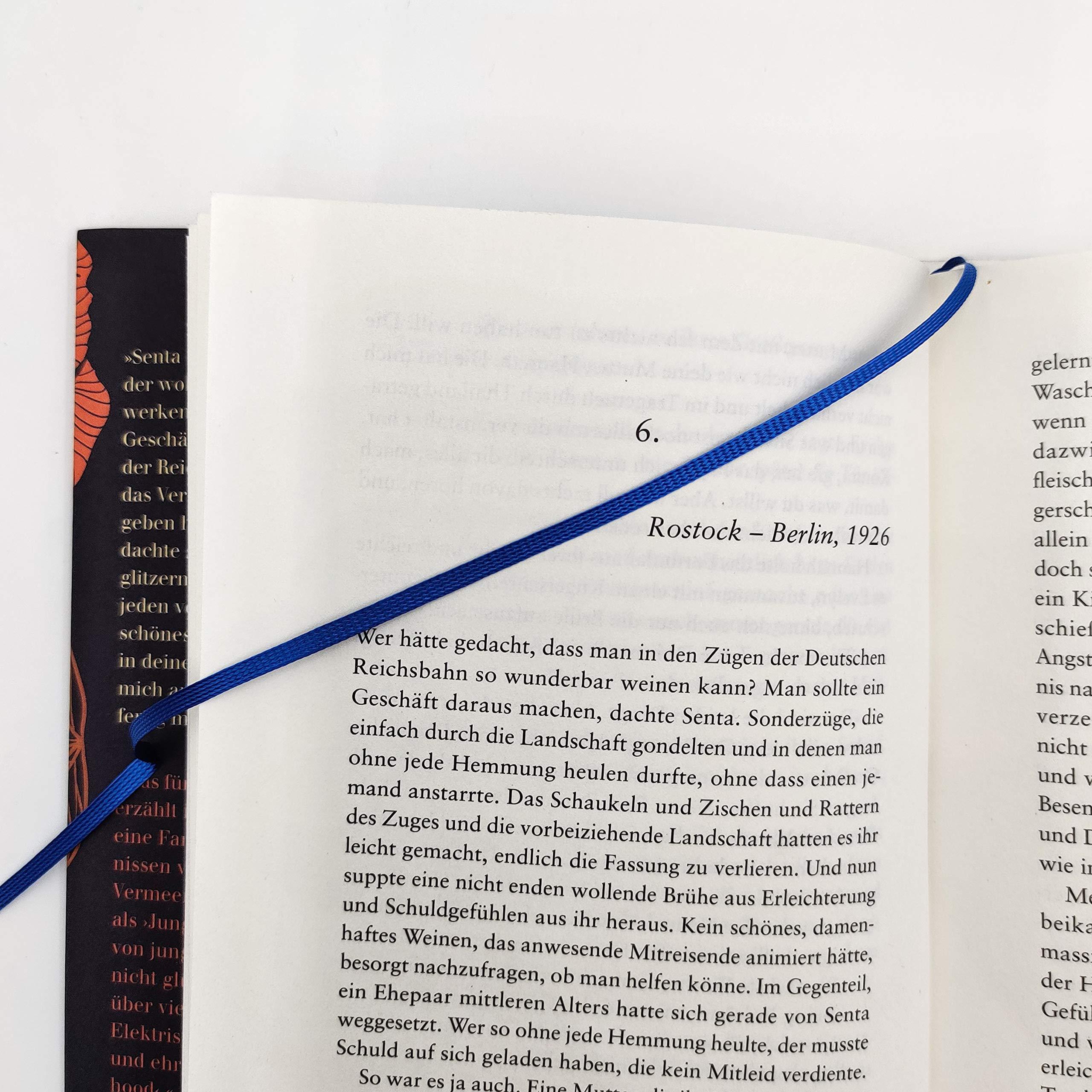 Junge Frau Am Fenster Stehend Abendlicht Blaues Kleid Roman Schröder Alena Bücher