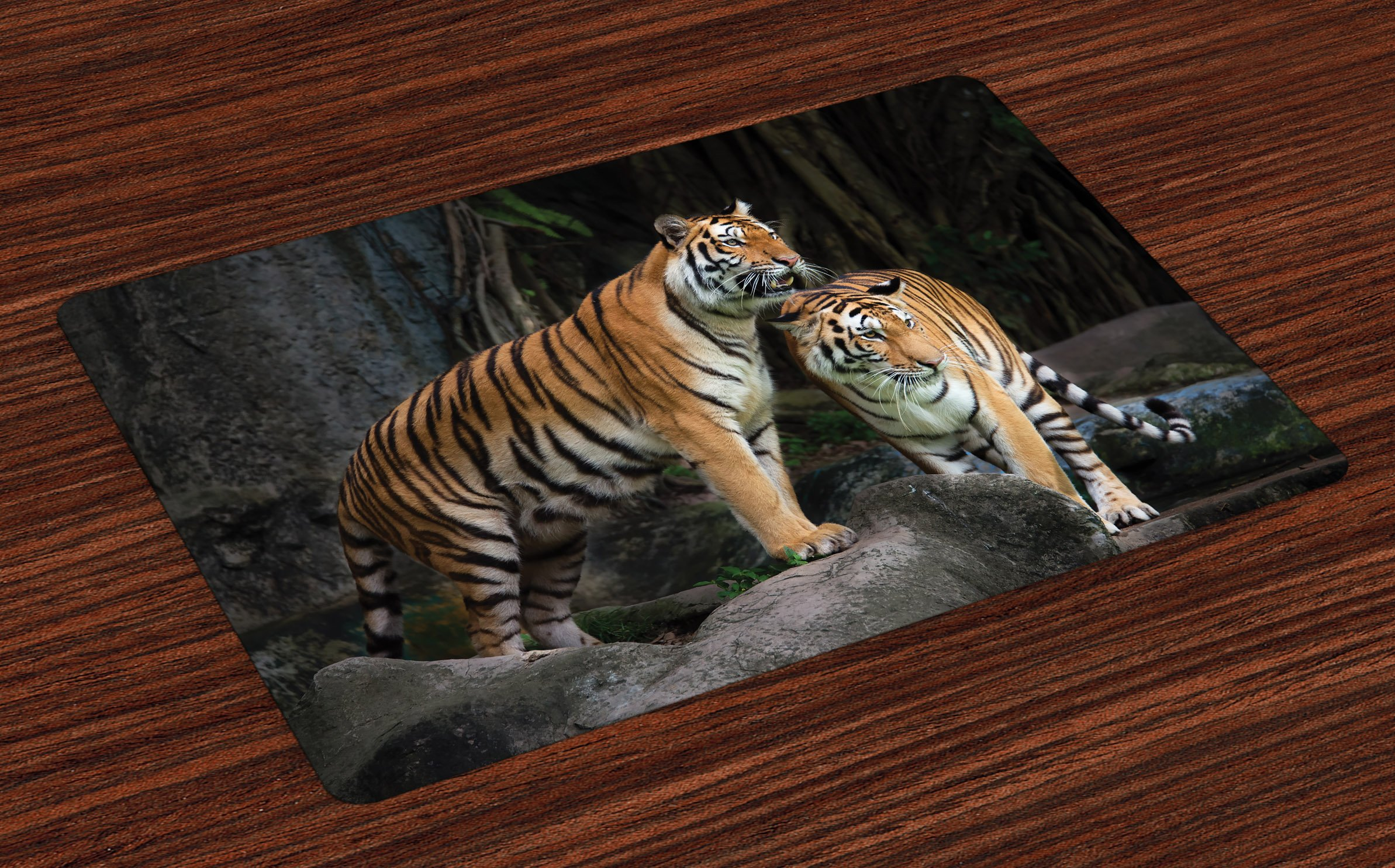 Ambesonne Animal Place Mats Set of 4, Tiger Couple in The Jungle on Big Rocks Image Wild Cats in Nature Image Print, Washable Fabric Placemats for Dining Room Kitchen Table Decor, Grey and Ginger