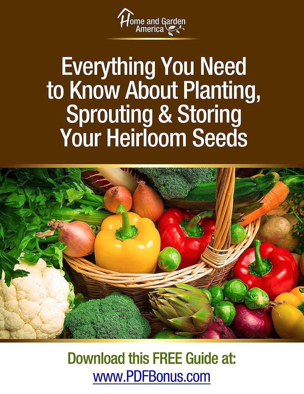 Amazon.com : Non-GMO Heirloom Vegetable Seeds Survival Garden - 105 ...