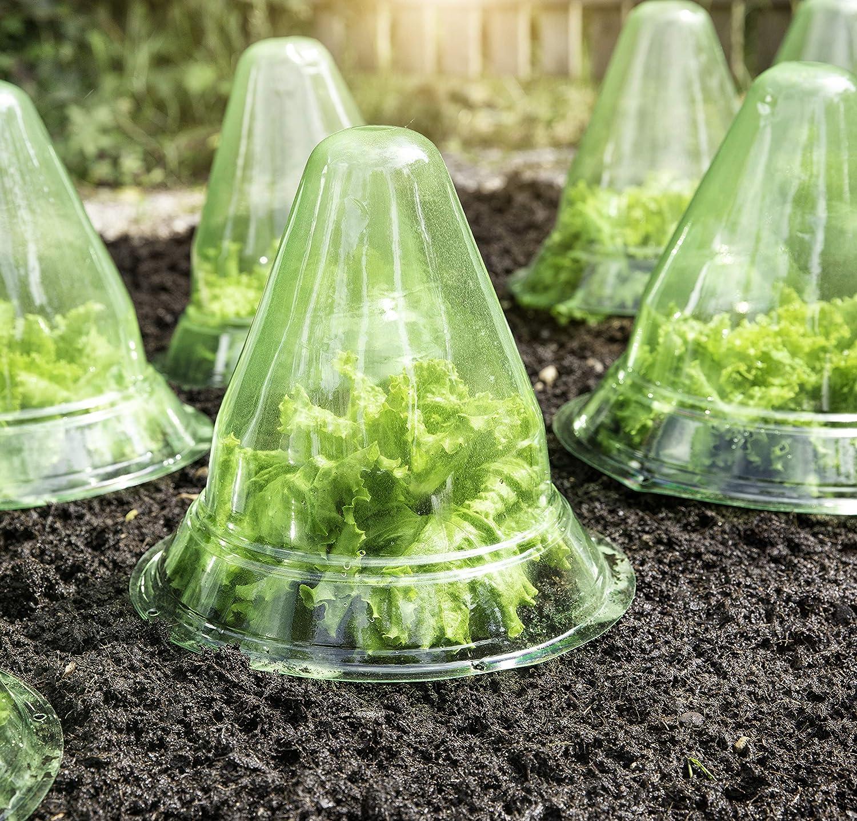 Schnecken /& V/ögeln Pack Pflanzglocke Pflanzenschutz Vor Frost Pflanzenhut Im 34er Set PVC Pflanzhilfe