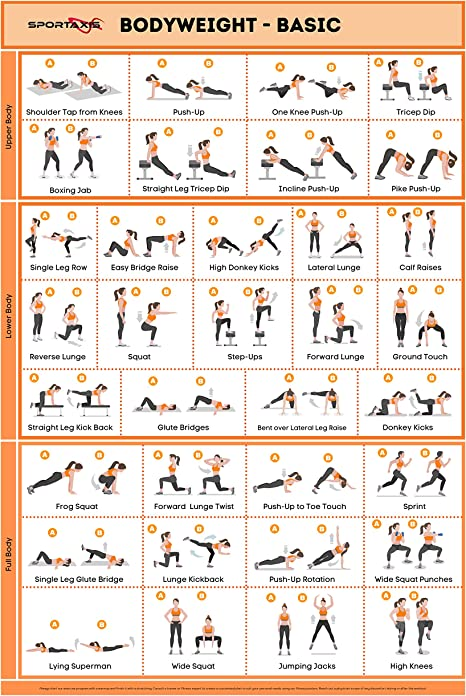 Amazon Com Sportaxis No Equipment Laminated Body Weight Workout Poster With Coloured Illustrations Home Workout Posters For Men And Women Body Weight Basic Poster 18 X 27 Everything Else