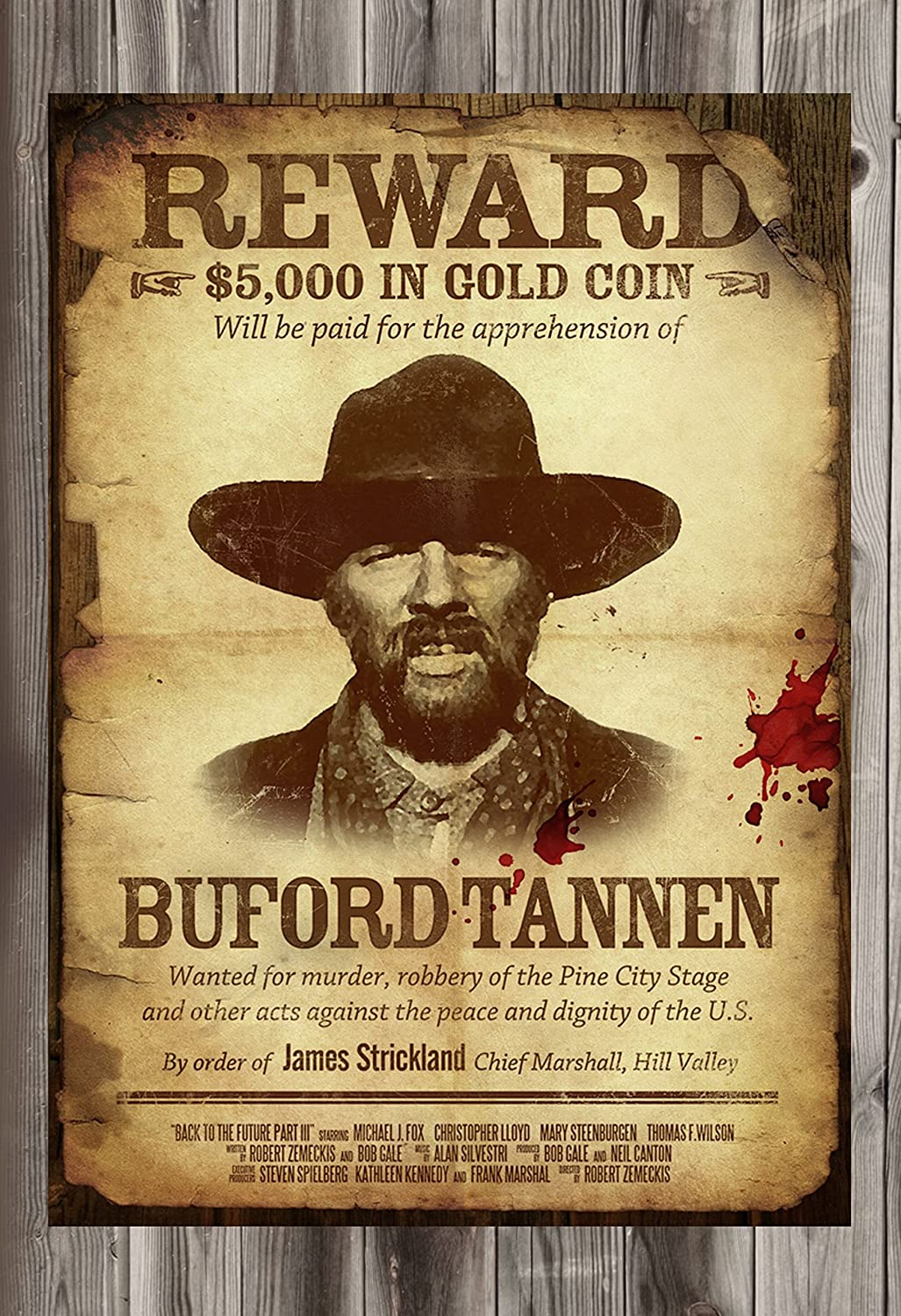 Amazon.com: Old Tin Sign Back To The Future Reward Wanted Buford ...