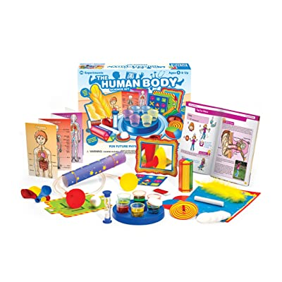 Thames & Kosmos Little Labs: The Human Body: Toys & Games