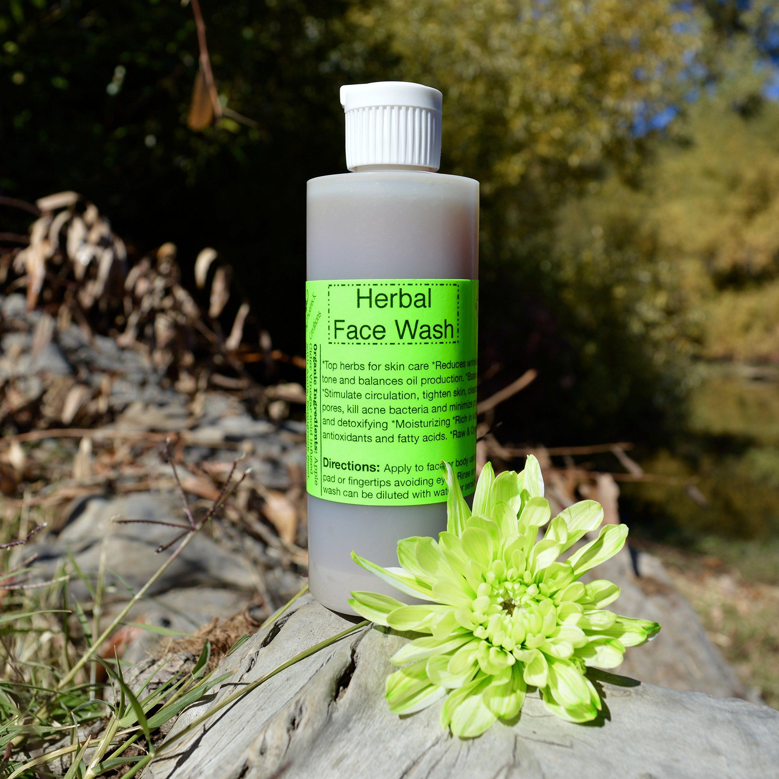 Herbal Face Wash- 4 Oz- Raw, Vegan, Organic, pH Balancing, free of harsh soaps and detergents, sensitive skin safe, balances oil production