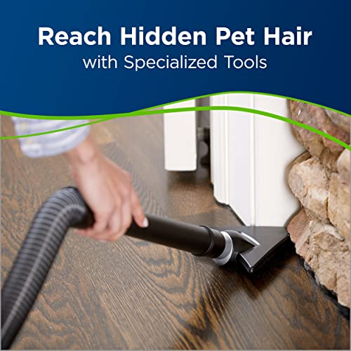 Remove pet hair with an upright vacuum
