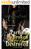 Partially Broken Never Destroyed II