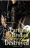 Partially Broken Never Destroyed II