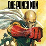 One-Punch Man (Issues) (14 Book Series)