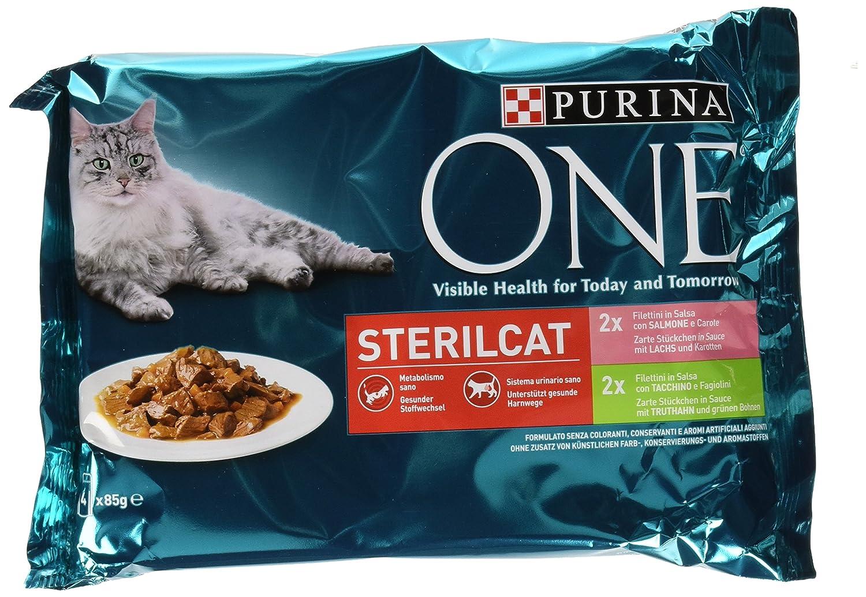 Purina One filettini (Salsa para El Gato sterilizzato, con salmón y Zanahoria, con Pavo y judías, 4 x 85 g - Paquete de 12 Unidades): Amazon.es: Productos ...