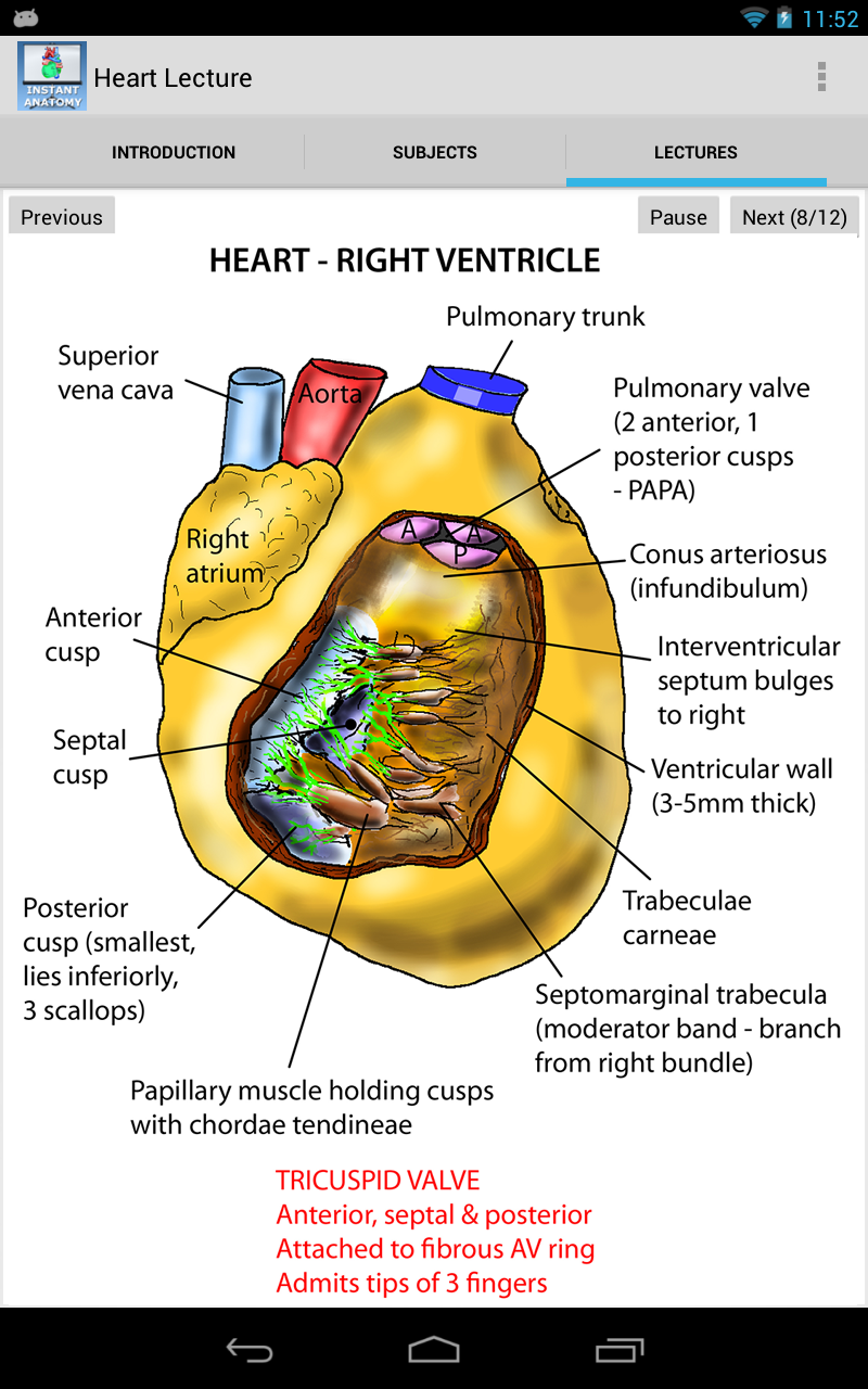 Anatomy Of The Heart Lecture Amazon Es Appstore Para Android