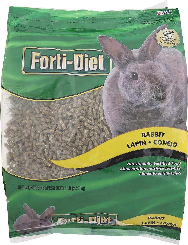 Kaytee Forti Rabbit Food, 5 Lb