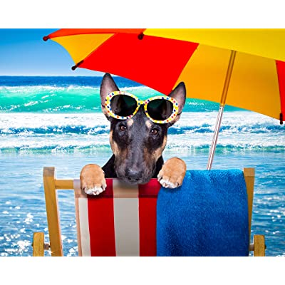 "CVPuzzles Bull Terrier at The Beach 504 Piece Jigsaw Puzzle 16"" X 20"": Toys & Games"