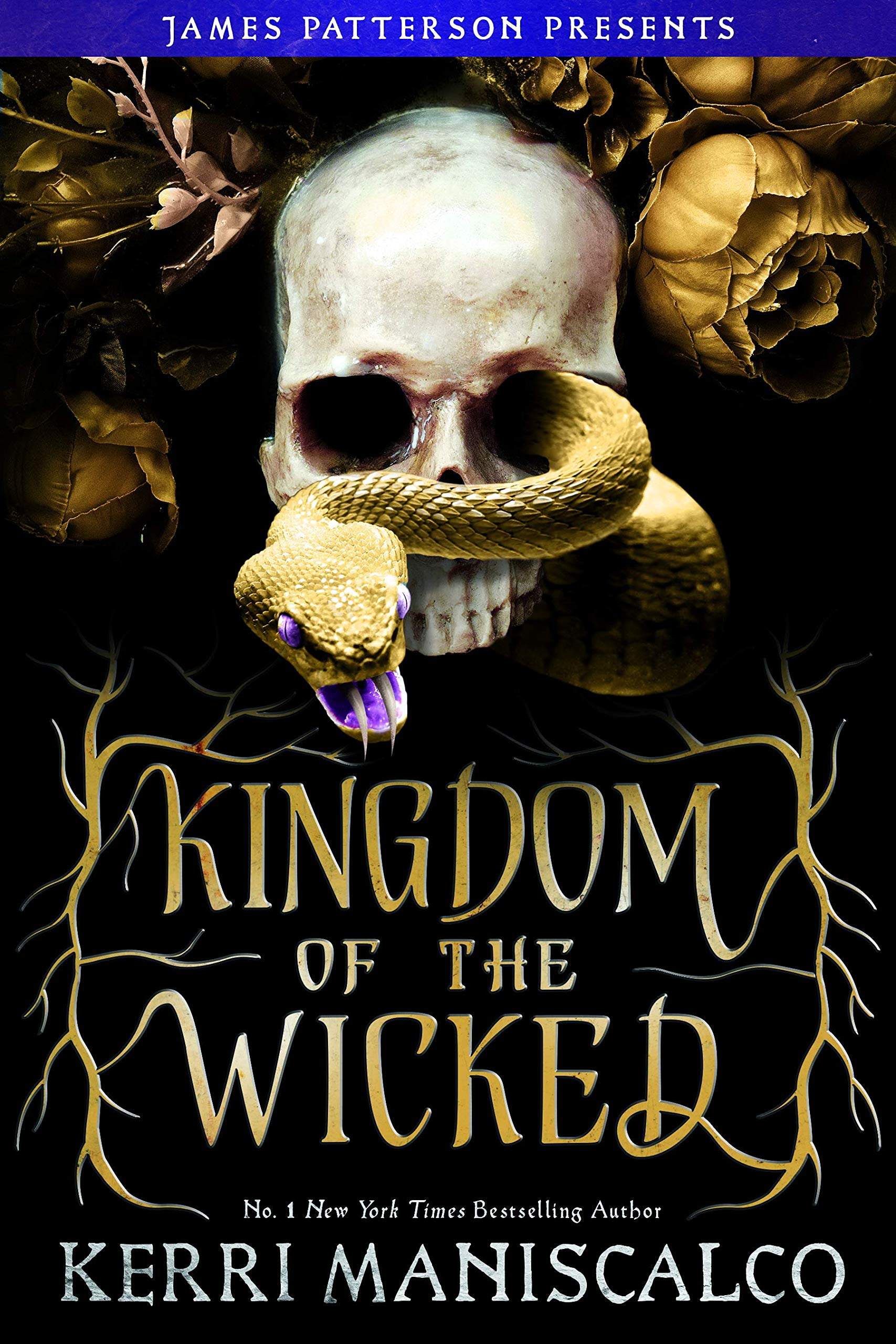 Amazon.com: Kingdom of the Wicked (Kingdom of the Wicked, 1)  (9780316428460): Maniscalco, Kerri: Books