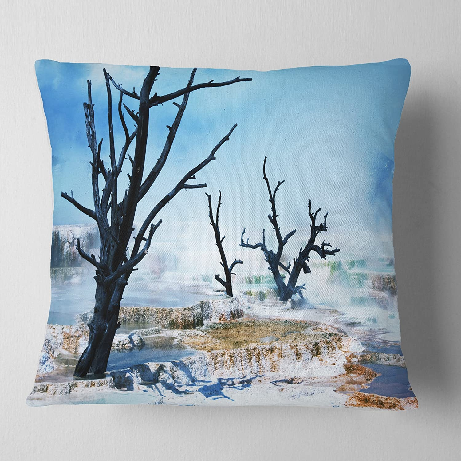 Designart CU12443-18-18 Beautiful Land with Large Dry Trees' Landscape Printed Cushion Cover for Living Room, Sofa Throw Pillow 18 in. x 18 in. in