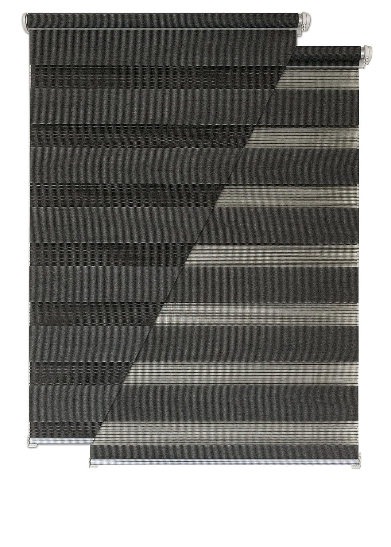 - Estor doble (Liedeco - Estor (80 x 160 cm antracita Ventana Persiana (sin agujeros: Amazon.es: Hogar