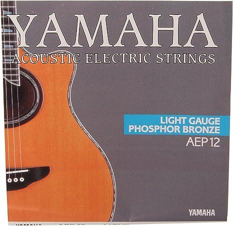 Yamaha AEP12 - Juego de cuerdas para guitarra: Amazon.es ...