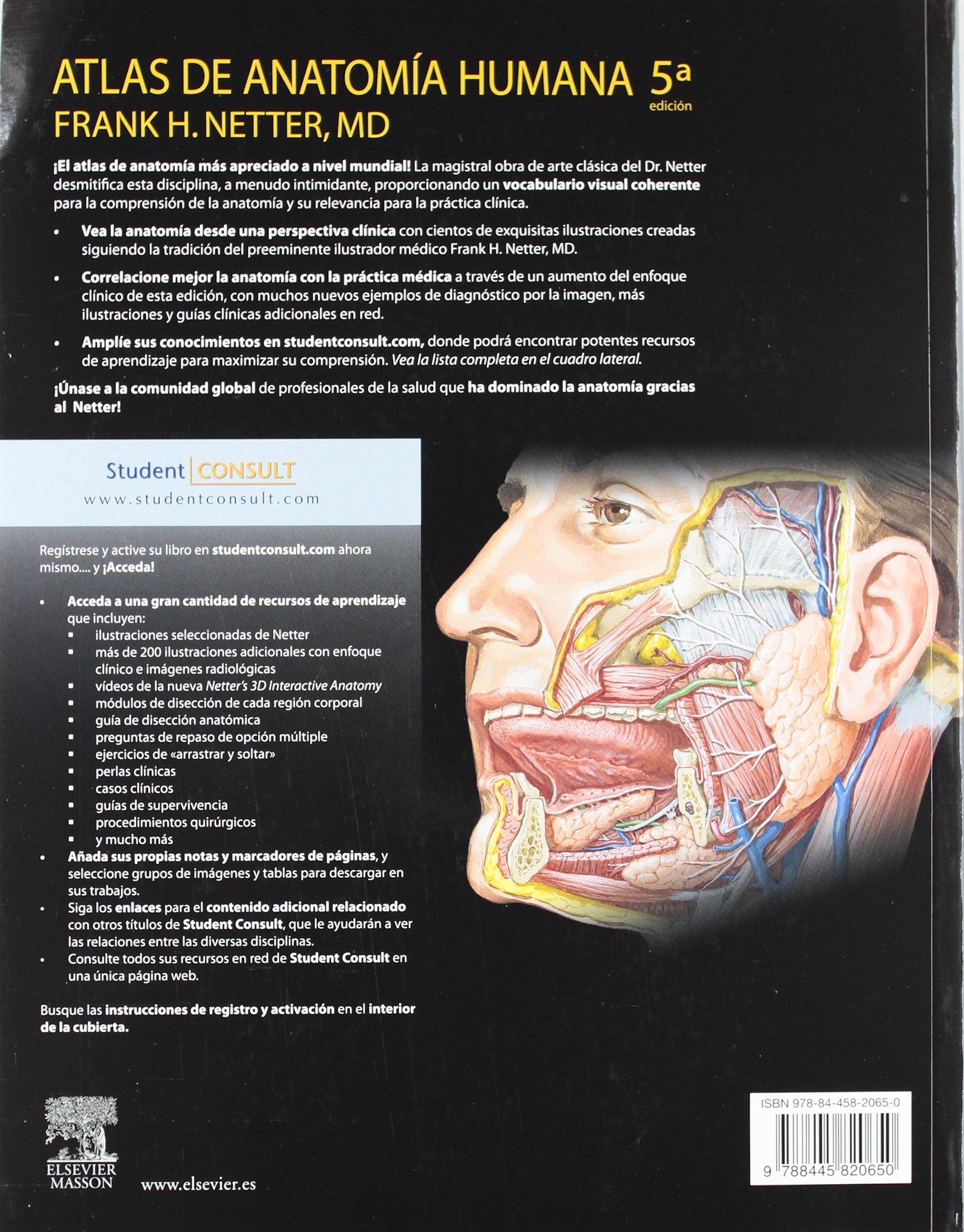 Atlas de Anatomía Humana: Amazon.es: F.H. Netter: Libros