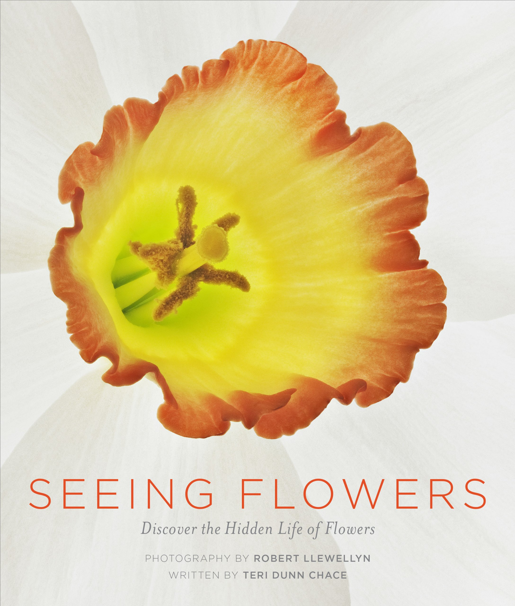 Seeing Flowers: Discover the Hidden Life of Flowers (Seeing Series)