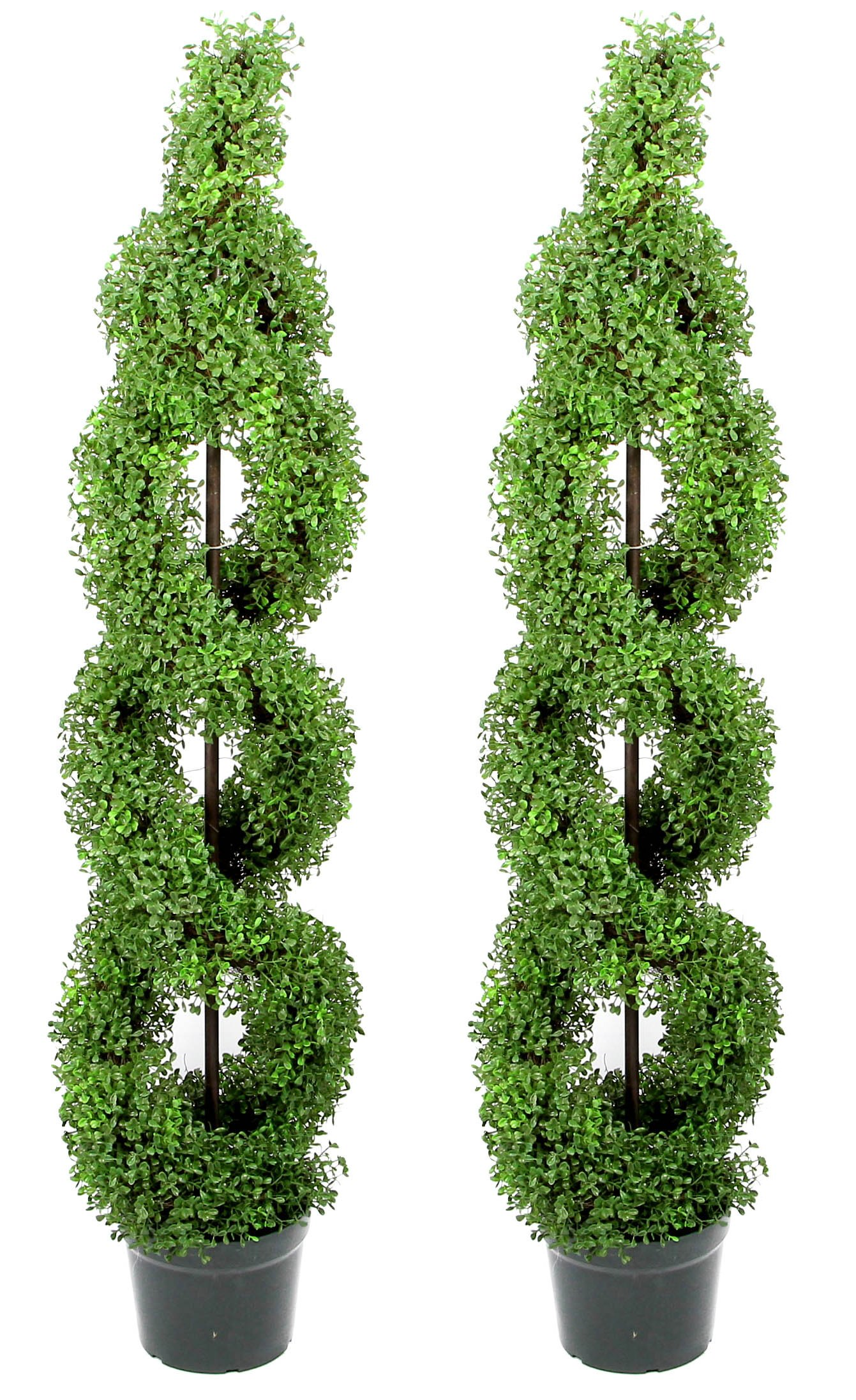 Admired By Nature 2' x 5' Artificial Boxwood Leave Double Spiral Topiary Plant Tree in Plastic Pot, Green by Admired By Nature