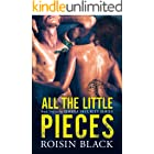 All The Little Pieces: Book Two In A Navy SEAL Security Series Military Romance (The Omega Security Series 2)