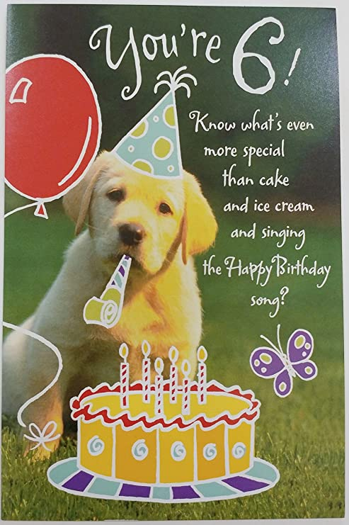 Happy 6th Birthday Greeting Card Six Years Party Golden Retriever Dog Office Products