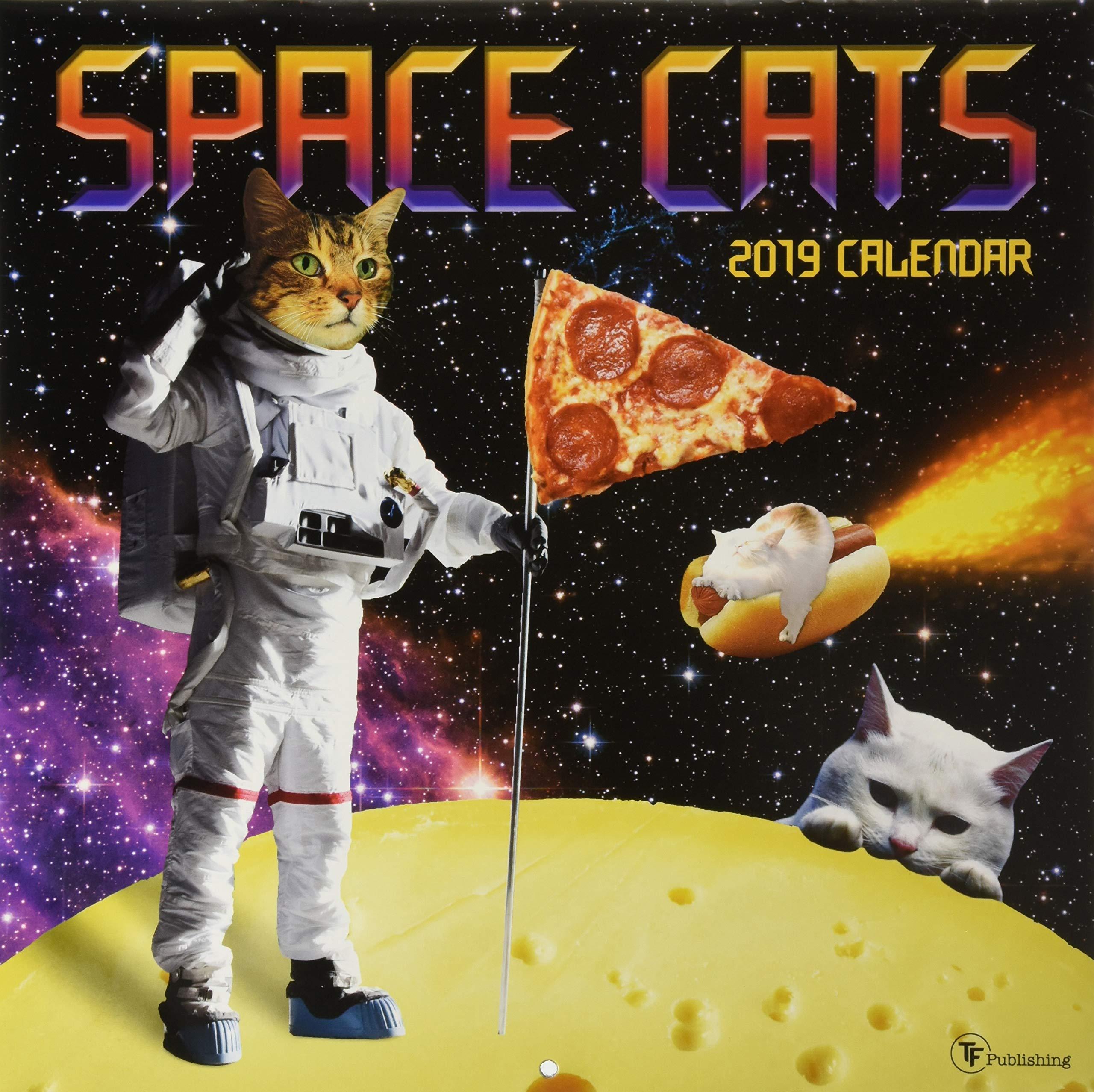 2019 Space Cats Wall Calendar TF Publishing 0619344335657