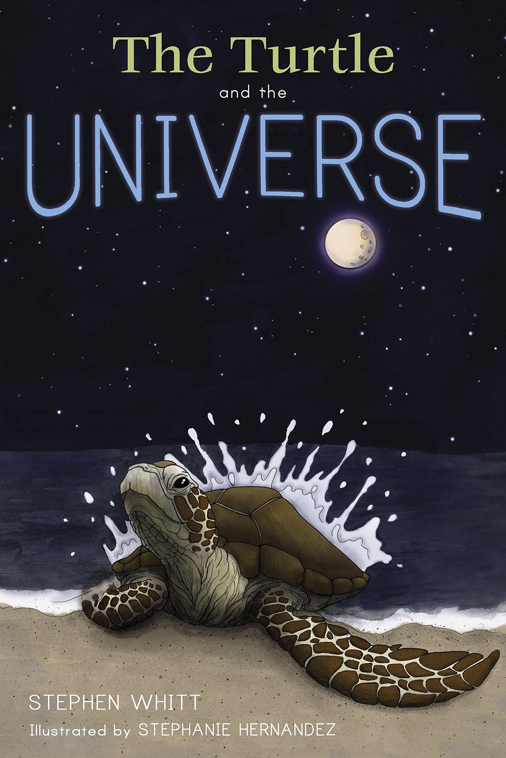 Download The Turtle and the Universe ebook