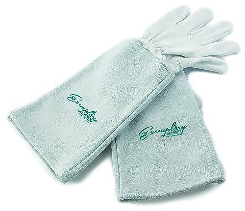Gloves-for-Thorns