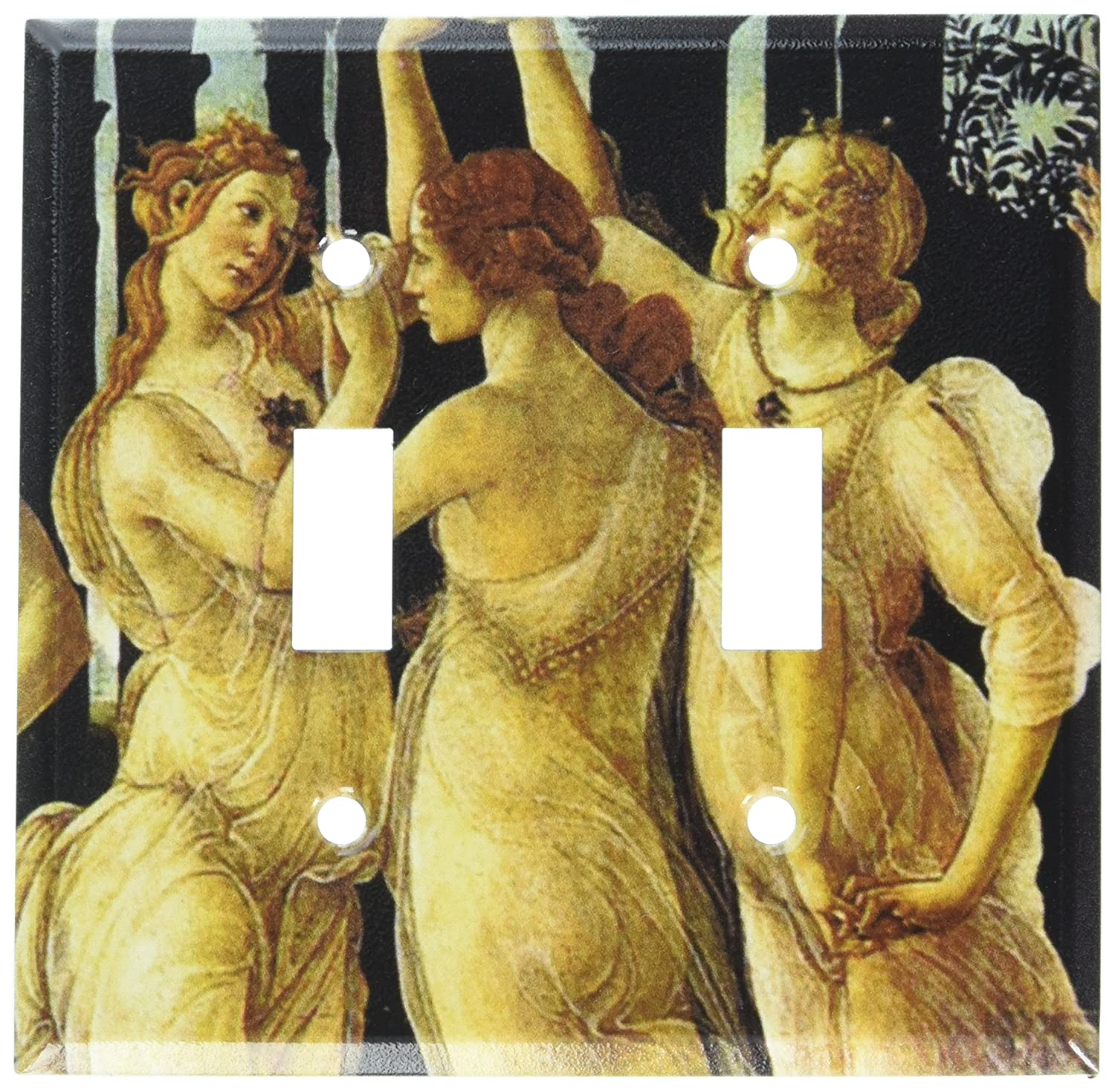 Double Toggle Spring Switch Plate Art Plates Botticelli