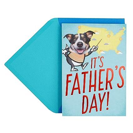Amazon hallmark funny fathers day greeting card pop up dog hallmark funny fathers day greeting card pop up dog weather joke m4hsunfo