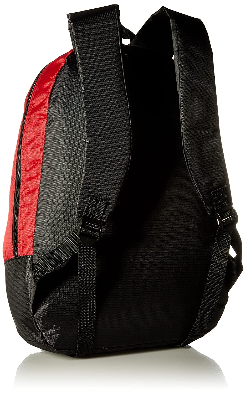 Arizona Cardinals 2015 Stripe Core Backpack